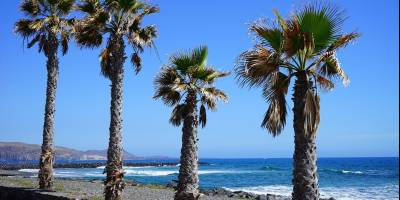 221120 Zonreis Tenerife